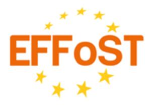 Logo EFFoST